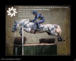 Equestrian Events Photography Competition