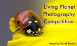 Living Planet Photography Competition